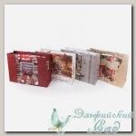 NGRS Подарочный пакет *С Новым Годом* Stilerra 23x18x10 см (бордовый)