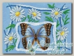 PANNA Набор для вышивания Б-0682 *Ромашковое лето*