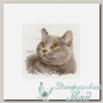 АЛИСА Набор для вышивания 0-134 *Британский кот*