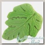 Форма пластмассовая для изготовления листьев *Хризантема морифолиум* Reddy, 9,7 х 12 см