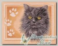 PANNA Набор для вышивания Ж-1171 *Персидский кот*
