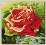 Канва с нанесенным рисунком *Красная роза*, Матренин Посад 1216