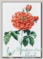 RTO Набор для вышивания C068 *Роза*