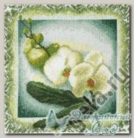 04.008.06 Набор для вышивания *Орхидея*, Марья Искусница