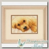 DIMENSIONS Набор для вышивания 65038 *Золотой щенок*