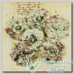 Цветы бумажные (цвет - script) 539375 Belle Arte Prima Marketing, 6 шт